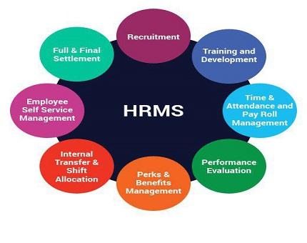 منابع-انسانی-نقش-آموزش - بهسازی- توسعه-تعالی-فرتاک-
